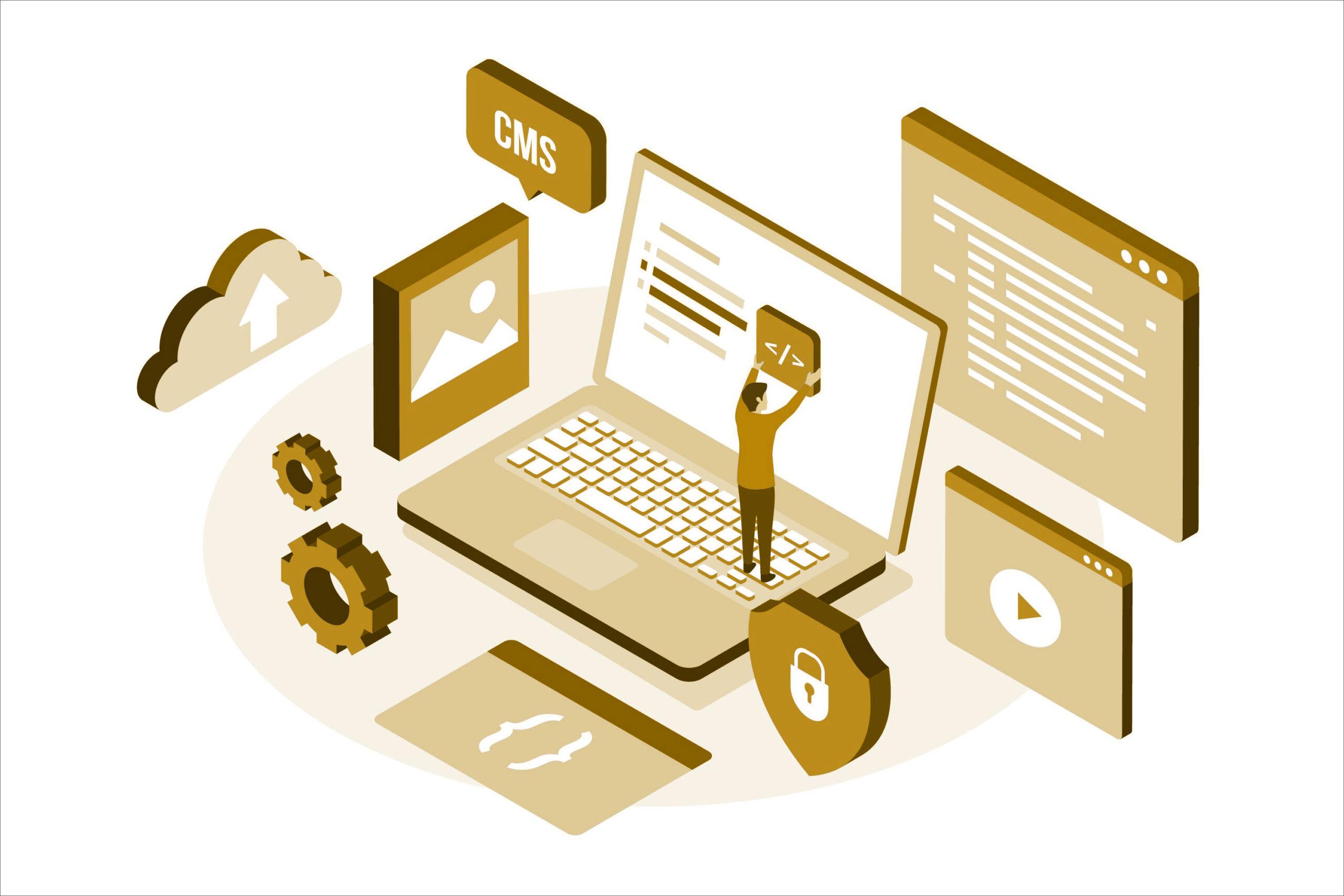 Content Management Systems (CMS)